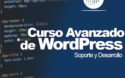 Curso Avanzado de WordPress Plus